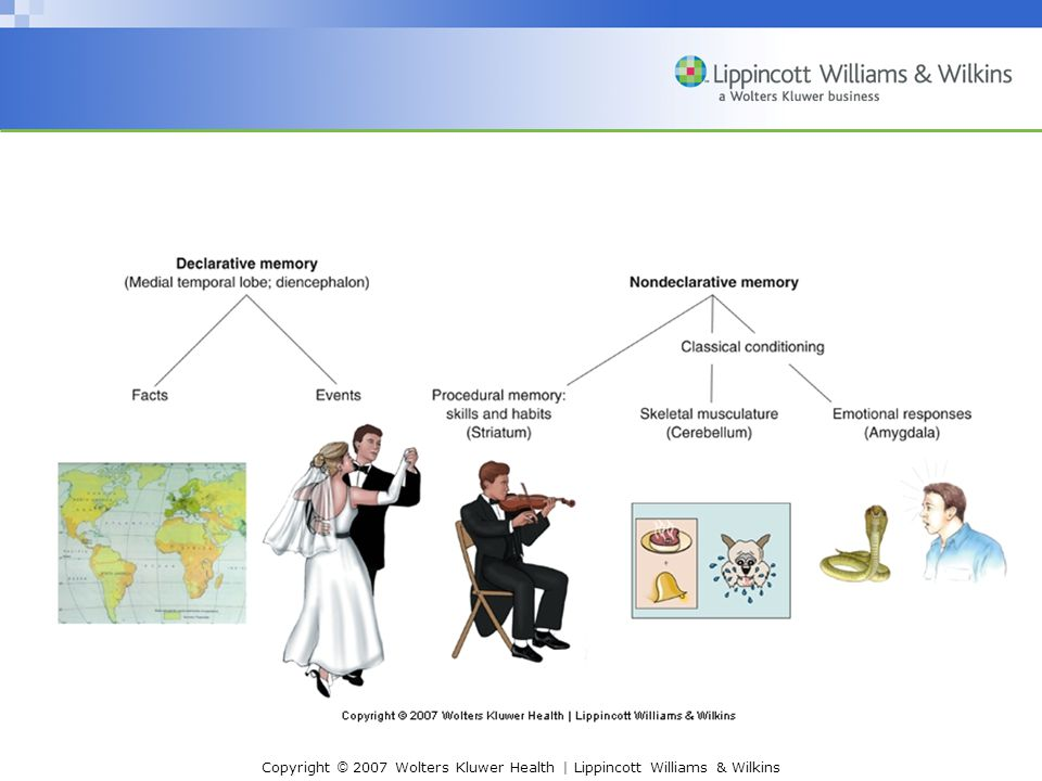Copyright © 2007 Wolters Kluwer Health | Lippincott Williams & Wilkins