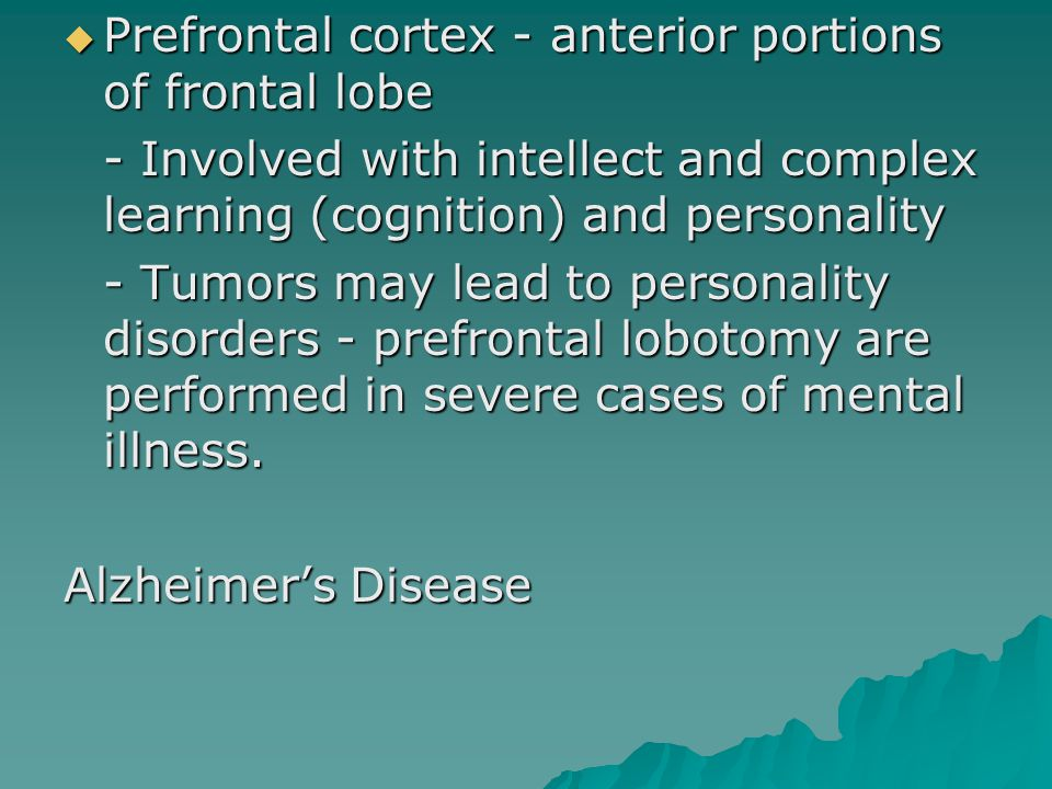  Prefrontal cortex - anterior portions of frontal lobe - Involved with intellect and complex learning (cognition) and personality - Tumors may lead to personality disorders - prefrontal lobotomy are performed in severe cases of mental illness.