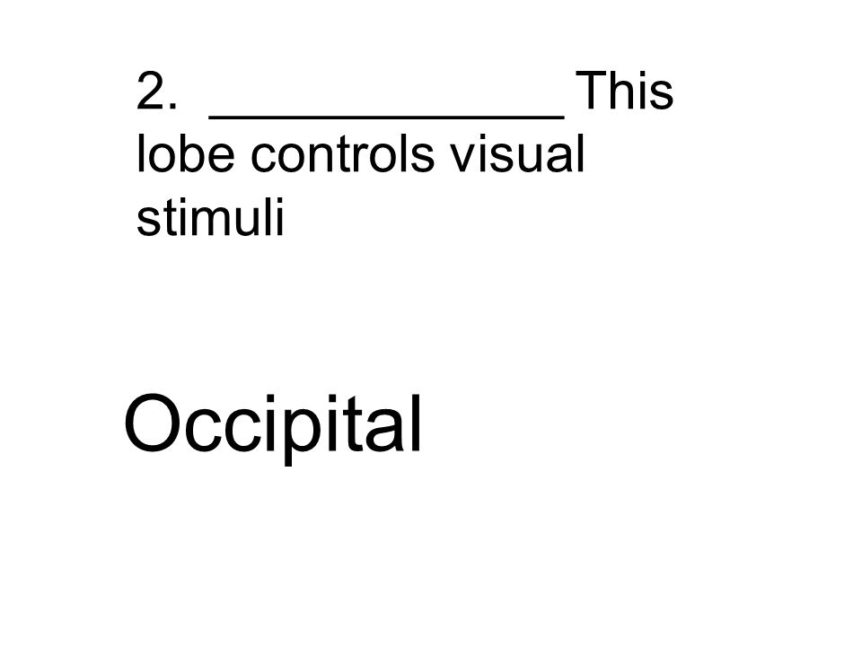 2. ____________ This lobe controls visual stimuli Occipital