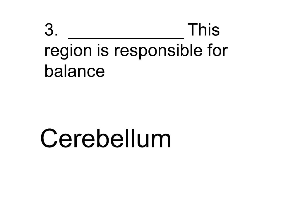 3. ____________ This region is responsible for balance Cerebellum