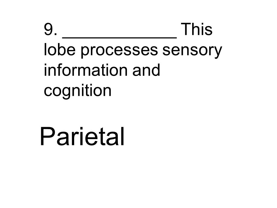 9. ____________ This lobe processes sensory information and cognition Parietal