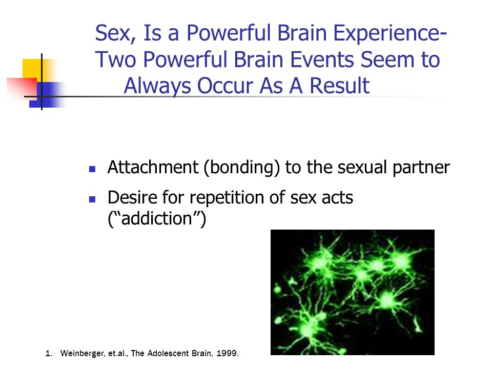 Sex, Is a Powerful Brain Experience- Two Powerful Brain Events Seem to Always Occur As A Result Attachment (bonding) to the sexual partner Desire for repetition of sex acts ( addiction ) 1.Weinberger, et.al., The Adolescent Brain, 1999.