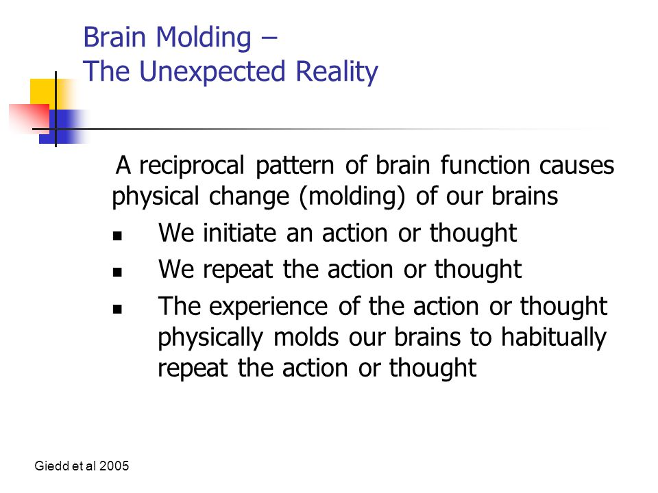 Brain Molding – The Unexpected Reality A reciprocal pattern of brain function causes physical change (molding) of our brains We initiate an action or thought We repeat the action or thought The experience of the action or thought physically molds our brains to habitually repeat the action or thought Giedd et al 2005