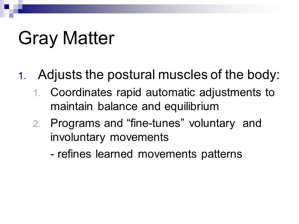 Gray Matter 1. Adjusts the postural muscles of the body: 1. Coordinates rapid automatic adjustments to maintain balance and equilibrium 2. Programs an