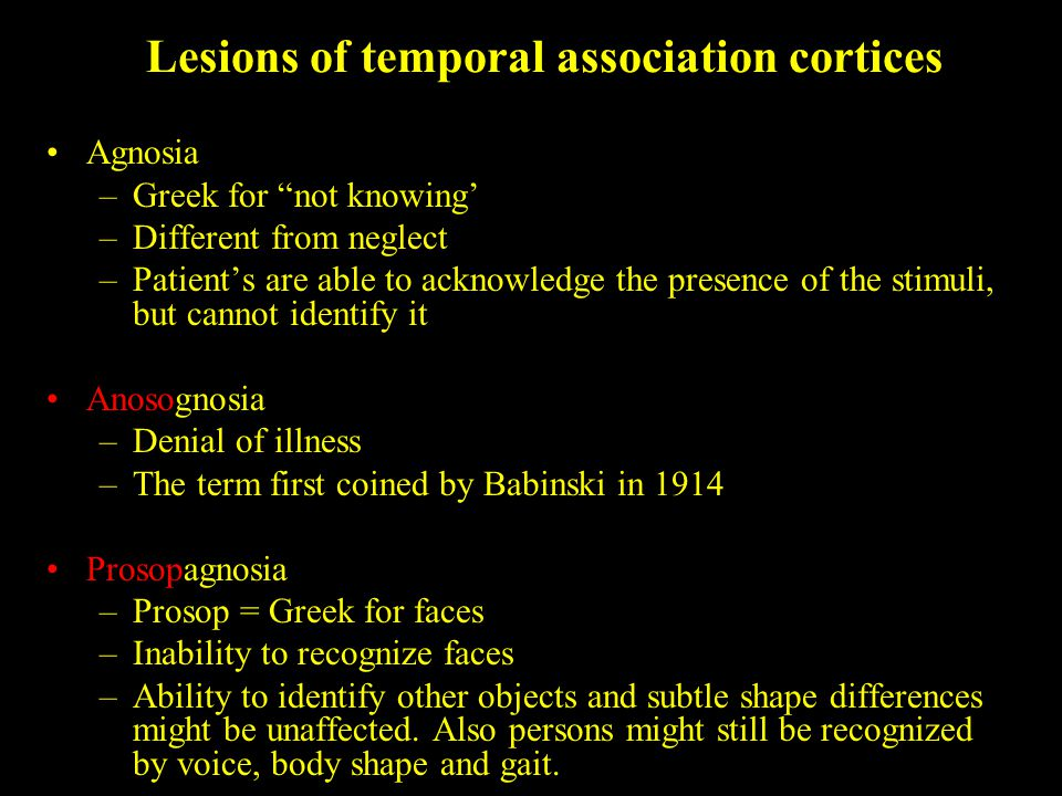 Lesions of temporal association cortices Agnosia –Greek for not knowing' –Different from neglect –Patient's are able to acknowledge the presence of the stimuli, but cannot identify it Anosognosia –Denial of illness –The term first coined by Babinski in 1914 Prosopagnosia –Prosop = Greek for faces –Inability to recognize faces –Ability to identify other objects and subtle shape differences might be unaffected.