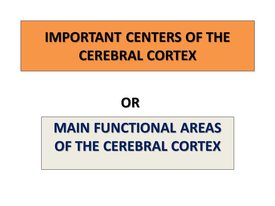 IMPORTANT CENTERS OF THE CEREBRAL CORTEX MAIN FUNCTIONAL AREAS OF THE CEREBRAL CORTEX OR