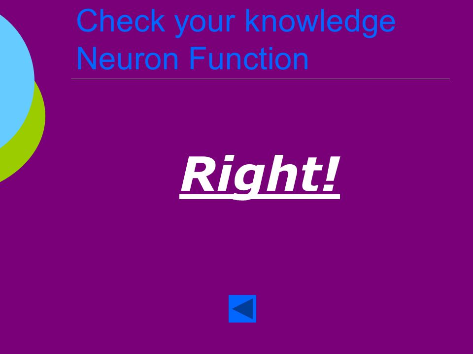 Check your knowledge Neuron Function  True or False The neurons collect information and transmit it through the brain.