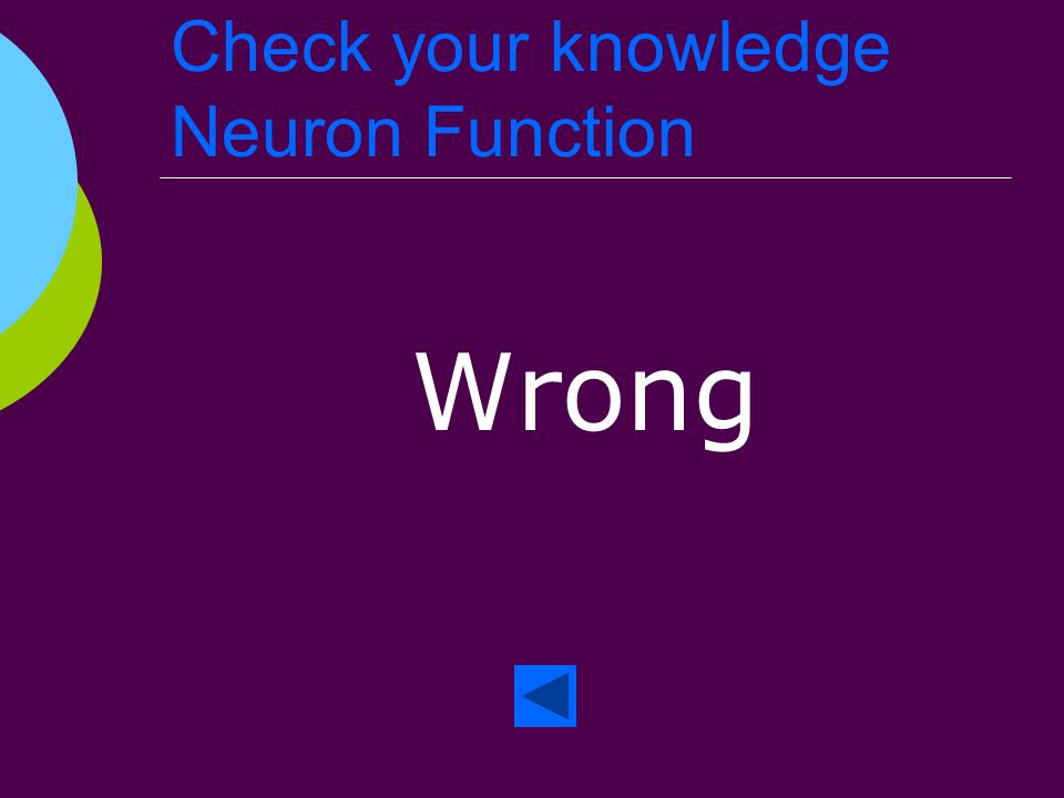 Check your knowledge Neuron Function Right!
