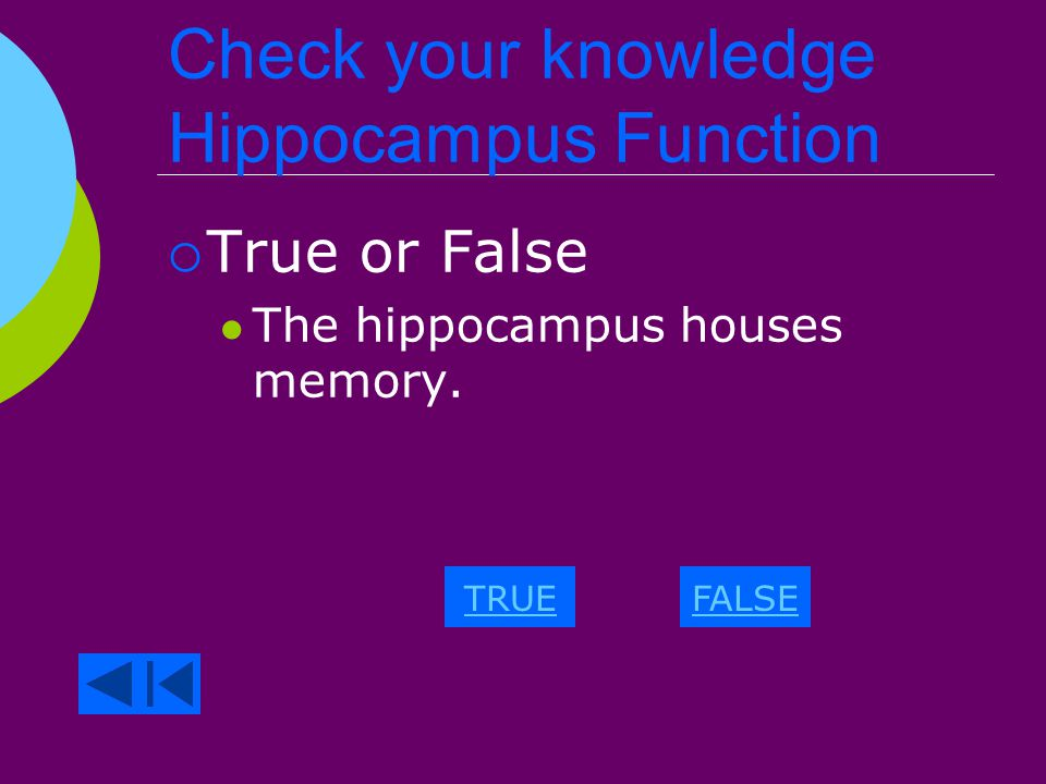 Check your knowledge Neuron Function Wrong