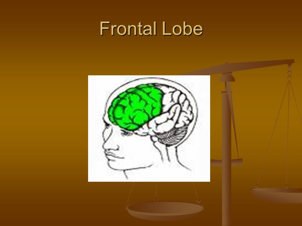 Function of Frontal Lobe Responsible for: Executive functioning tasks such as: planningstrategizingorganizing Attention functioning: maintaining attention shifting attention