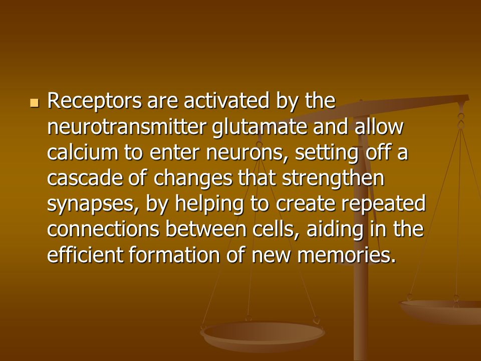 Receptors are activated by the neurotransmitter glutamate and allow calcium to enter neurons, setting off a cascade of changes that strengthen synapse
