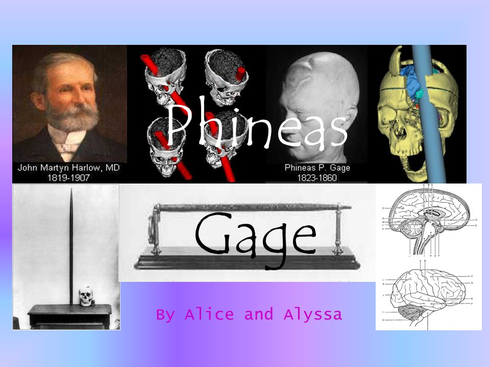 By Alice and Alyssa Phineas Gage