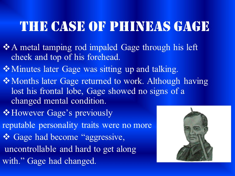The Case of Phineas Gage  A metal tamping rod impaled Gage through his left cheek and top of his forehead.