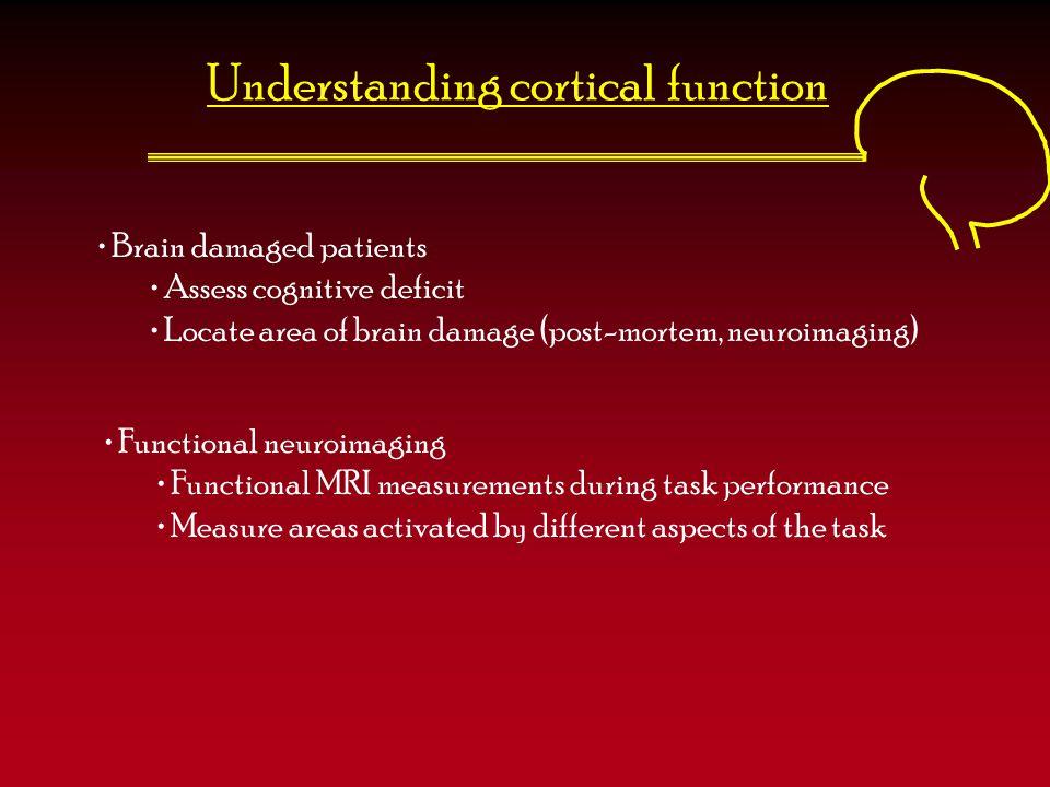 Understanding cortical function Brain damaged patients Assess cognitive deficit Locate area of brain damage (post-mortem, neuroimaging) Functional neu