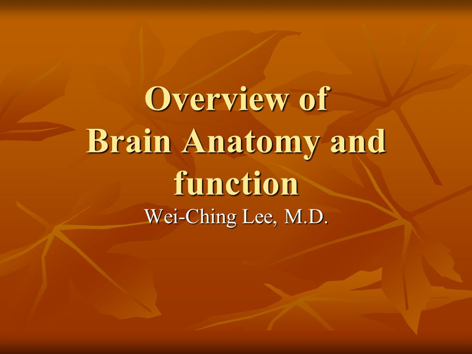 Overview of Brain Anatomy and function Wei-Ching Lee, M.D.