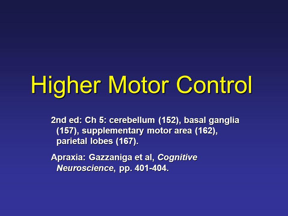 Major Brain Regions Cortical: A.Primary motor cortex B.Secondary motor cortex (supplementary motor area + pre-motor cortex) C.Left parietal lobe Subcortical: D.Basal Ganglia E.Cerebellum