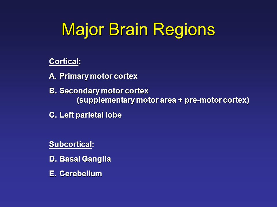Major Brain Regions Cortical: A.Primary motor cortex B.Secondary motor cortex (supplementary motor area + pre-motor cortex) C.Left parietal lobe Subcortical: D.Basal Ganglia E.Cerebellum