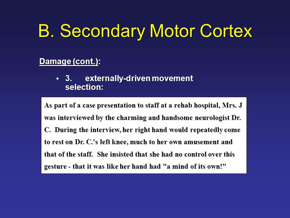 Functional Map of Motor Regions Secondary Motor Cortex Left Parietal Lobe Primary Motor Cortex Basal Ganglia Cerebellum Brainstem Spinal Cord