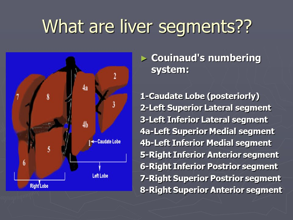 What are liver segments?? ► Couinaud's numbering system: 1-Caudate Lobe (posteriorly) 2-Left Superior Lateral segment 3-Left Inferior Lateral segment