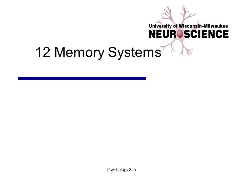 Psychology 3552 Introduction I.Learning and remembering distinguishes naïve from mature brain II.Relationship between visual development and learning A.Similar mechanisms in different cortical areas III.Memories range from stated facts to ingrained motor patterns IV.Anatomy: Several memory systems A.Evident from brain lesions