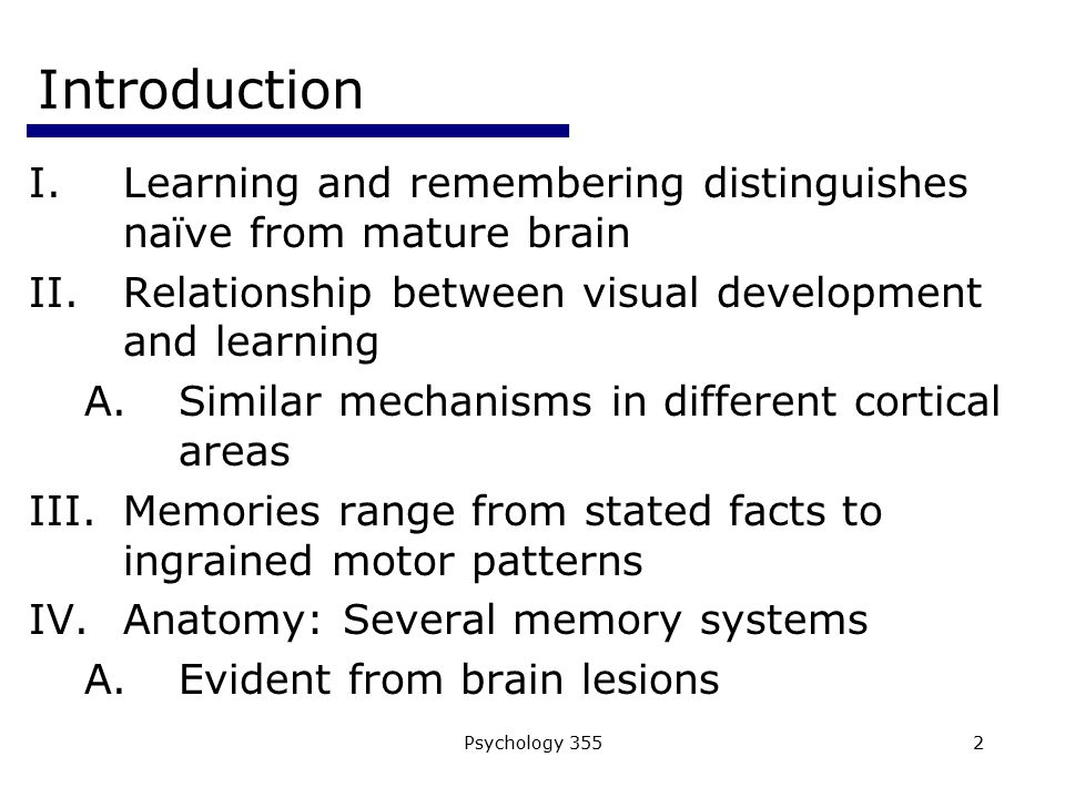 Psychology 35523 The Temporal Lobes and Declarative Memory Relational memory: Spatial Navigation