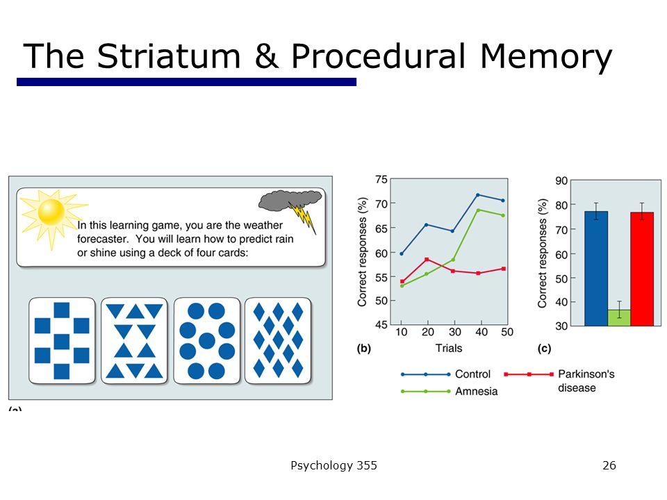 Psychology 35526 The Striatum & Procedural Memory