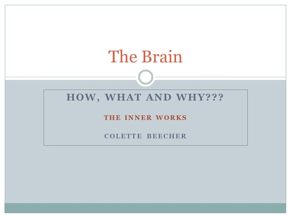 HOW, WHAT AND WHY THE INNER WORKS COLETTE BEECHER The Brain