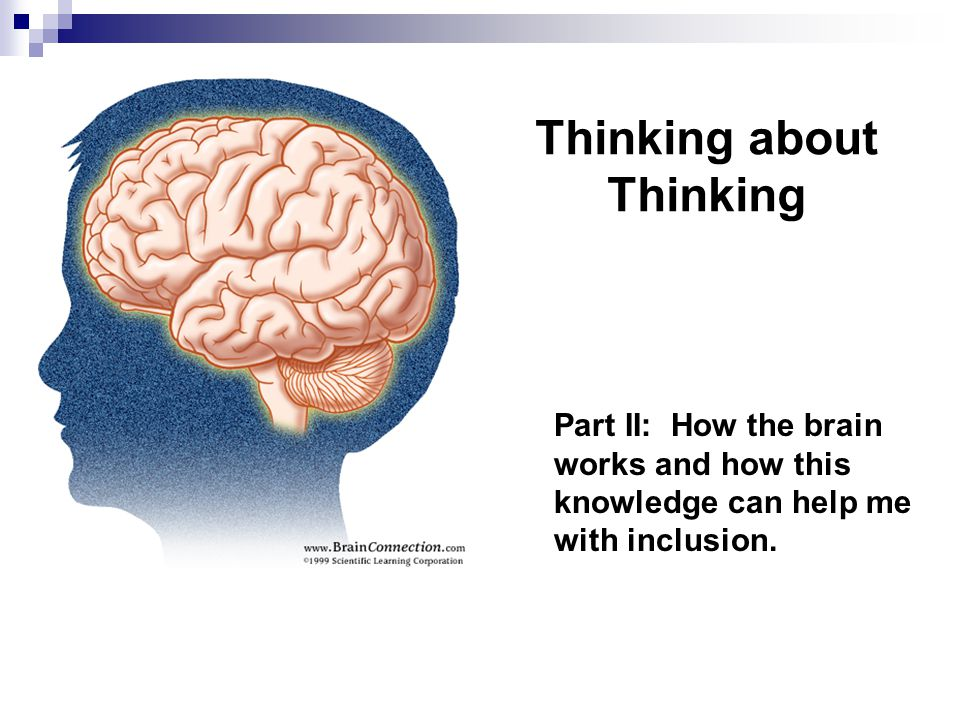 Thinking about Thinking Part II: How the brain works and how this knowledge can help me with inclusion.