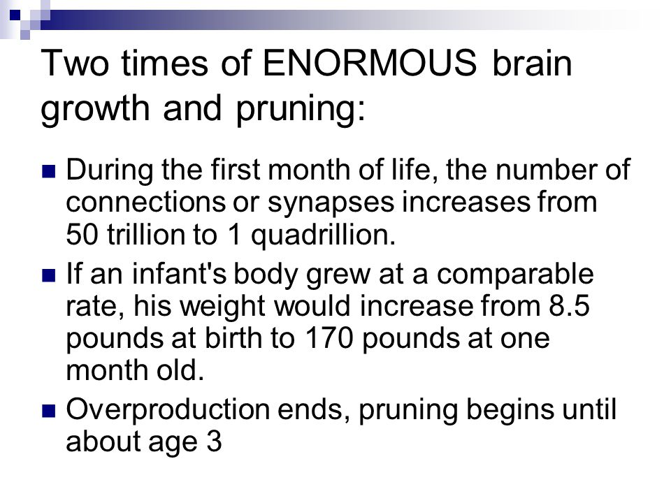Two times of ENORMOUS brain growth and pruning: During the first month of life, the number of connections or synapses increases from 50 trillion to 1 quadrillion.