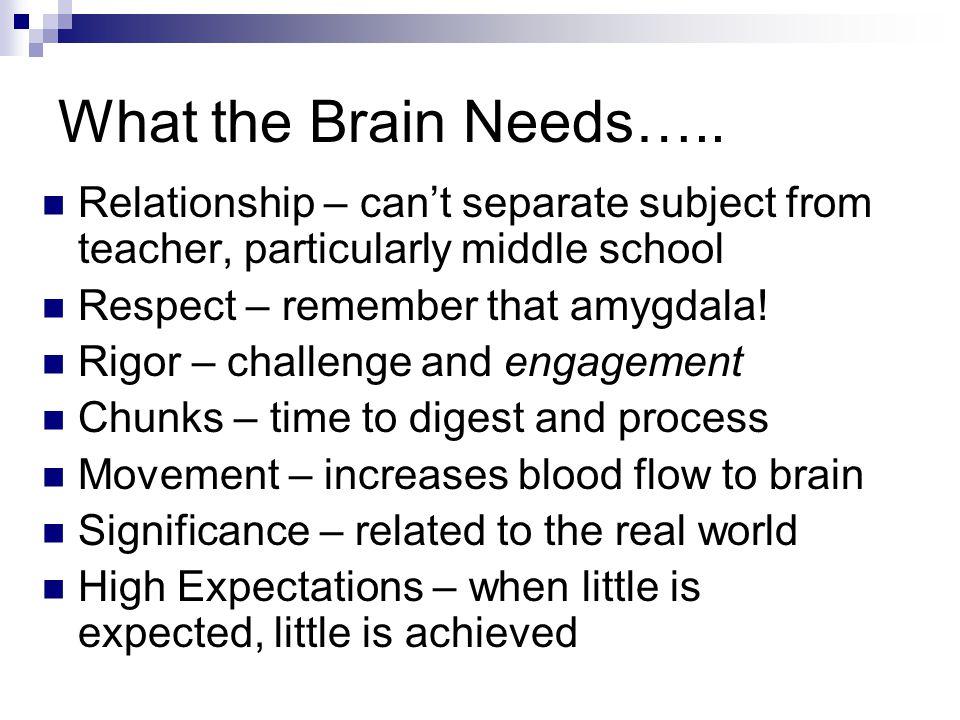 What the Brain Needs…..