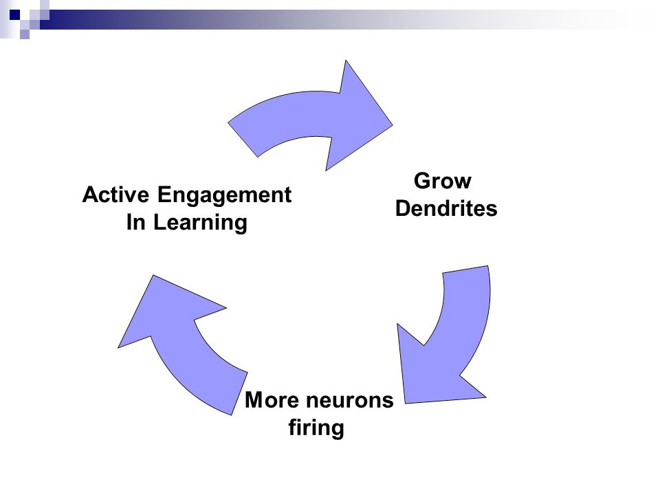 Grow Dendrites More neurons firing Active Engagement In Learning