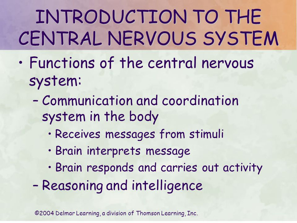 ©2004 Delmar Learning, a division of Thomson Learning, Inc. CEREBRUM