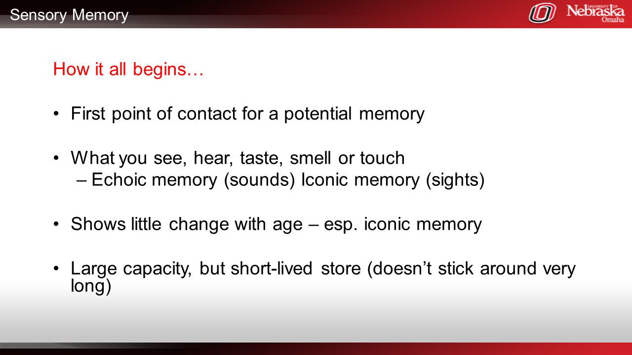 Sensory Memory How it all begins… First point of contact for a potential memory What you see, hear, taste, smell or touch –Echoic memory (sounds) Icon