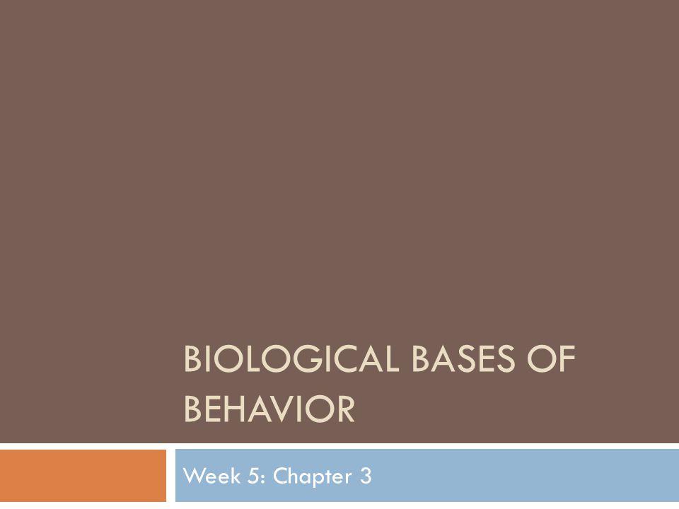 BIOLOGICAL BASES OF BEHAVIOR Week 5: Chapter 3