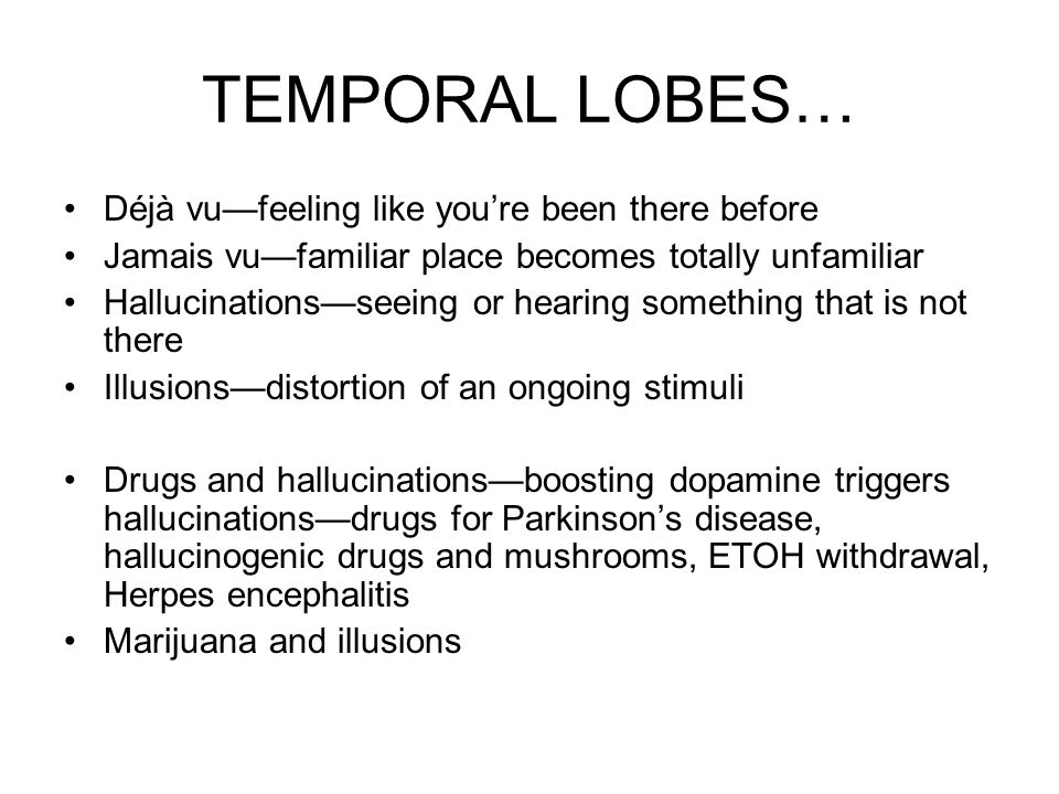 TEMPORAL LOBES… Déjà vu—feeling like you're been there before Jamais vu—familiar place becomes totally unfamiliar Hallucinations—seeing or hearing som