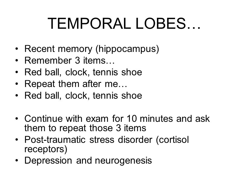 TEMPORAL LOBES… Recent memory (hippocampus) Remember 3 items… Red ball, clock, tennis shoe Repeat them after me… Red ball, clock, tennis shoe Continue