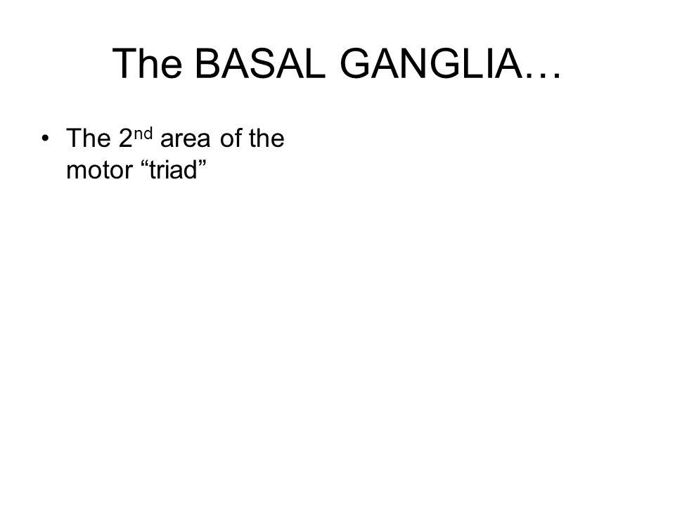 "The BASAL GANGLIA… The 2 nd area of the motor ""triad"""