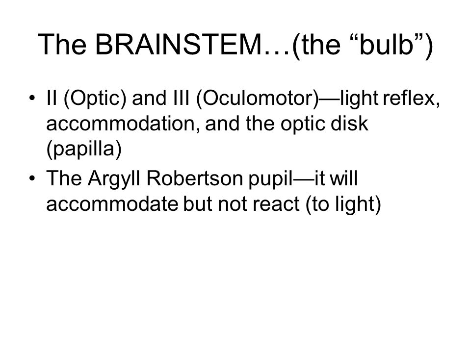 "The BRAINSTEM…(the ""bulb"") II (Optic) and III (Oculomotor)—light reflex, accommodation, and the optic disk (papilla) The Argyll Robertson pupil—it wil"