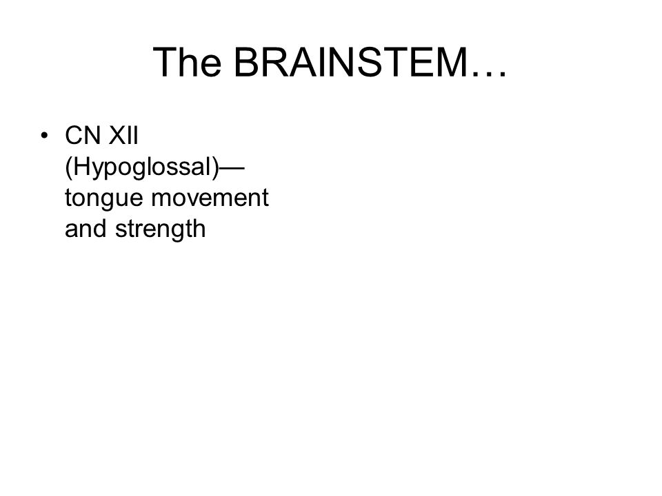 The BRAINSTEM… CN XII (Hypoglossal)— tongue movement and strength