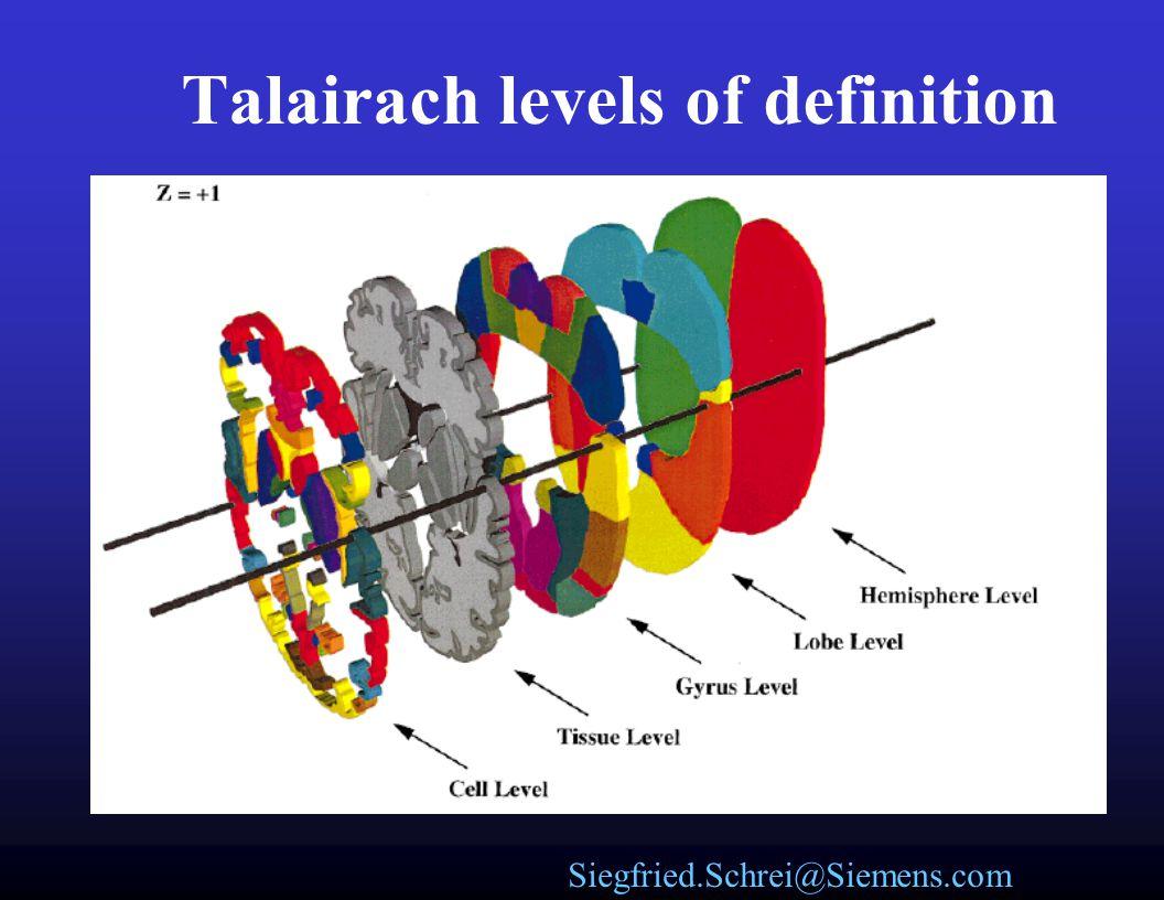 Siegfried.Schrei@Siemens.com Talairach Regions Talairach Atlas warped onto current brain.
