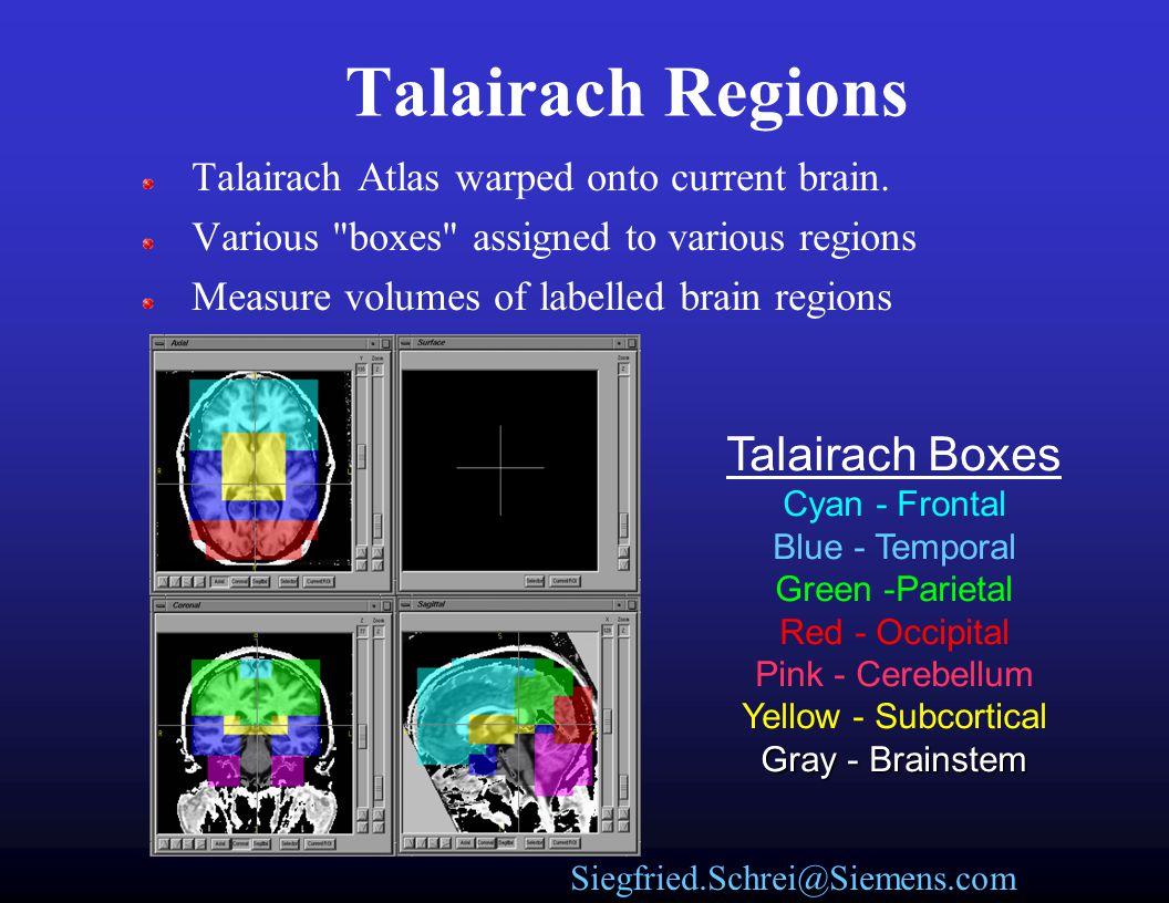 Siegfried.Schrei@Siemens.com Talairach vs. Brodmann