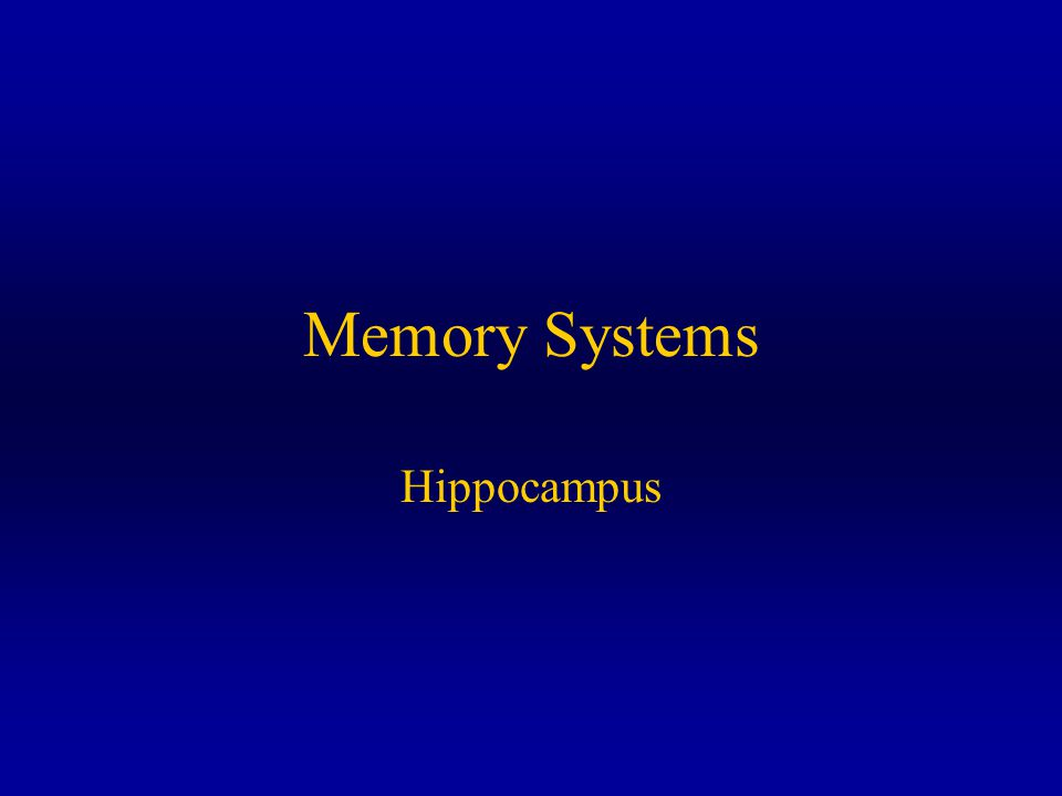 Memory Systems Hippocampus
