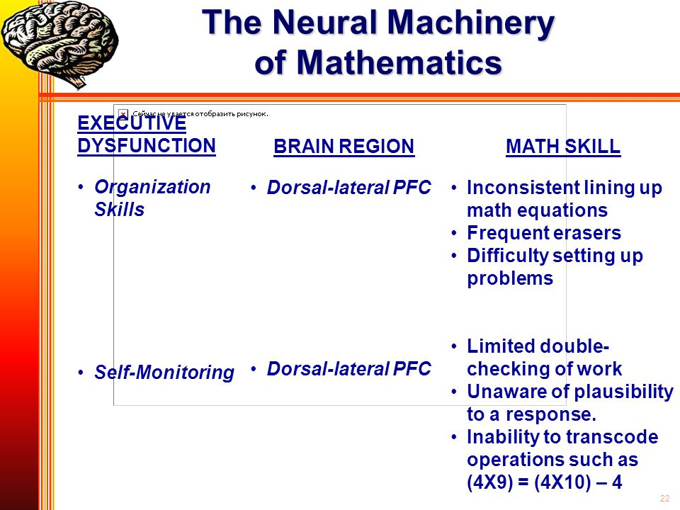 22 The Neural Machinery of Mathematics EXECUTIVE DYSFUNCTION Organization Skills Self-Monitoring BRAIN REGION Dorsal-lateral PFC MATH SKILL Inconsiste