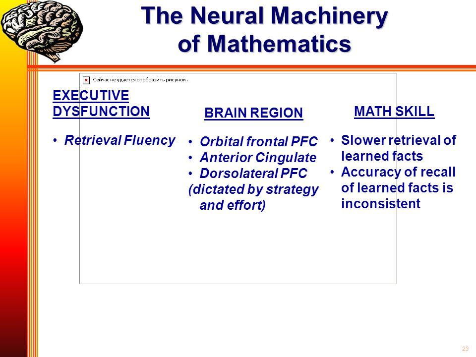 23 The Neural Machinery of Mathematics EXECUTIVE DYSFUNCTION Retrieval Fluency BRAIN REGION Orbital frontal PFC Anterior Cingulate Dorsolateral PFC (d