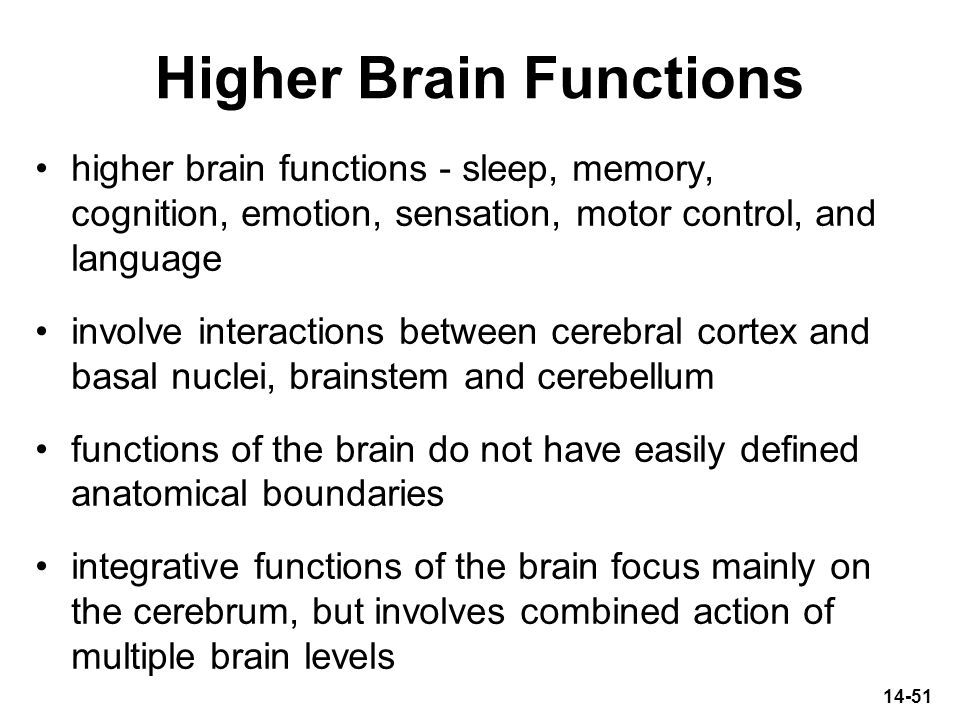 14-51 Higher Brain Functions higher brain functions - sleep, memory, cognition, emotion, sensation, motor control, and language involve interactions b