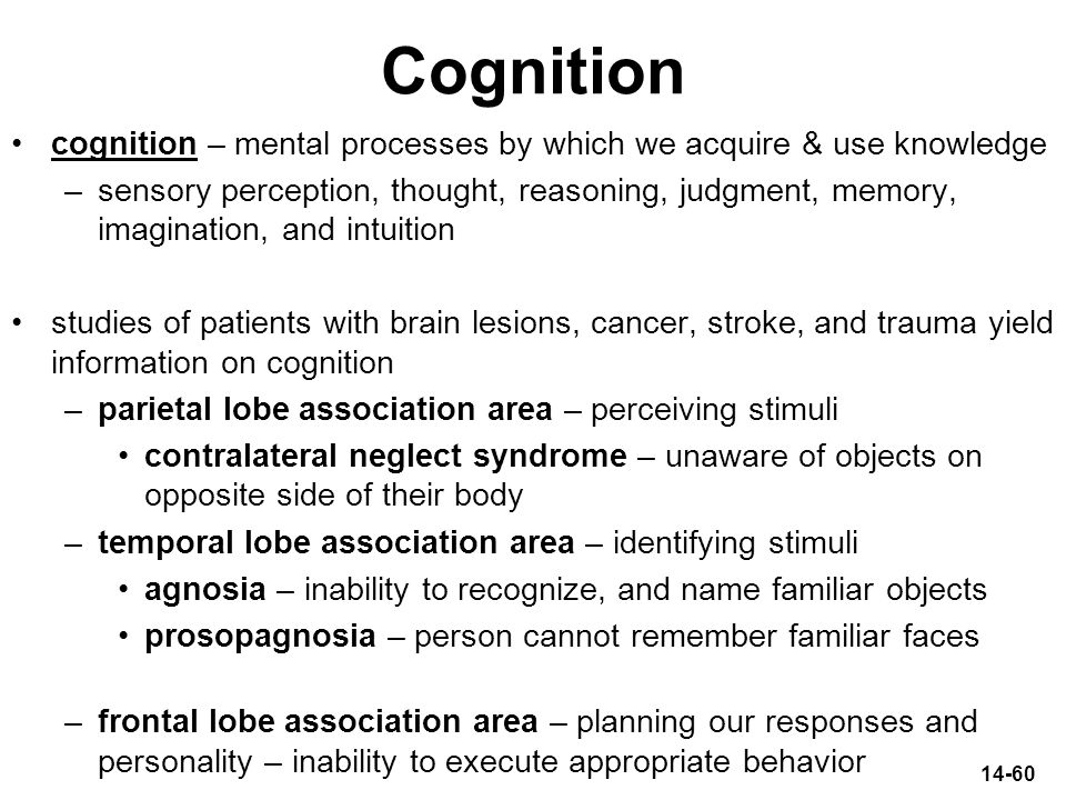 14-60 Cognition cognition – mental processes by which we acquire & use knowledge –sensory perception, thought, reasoning, judgment, memory, imaginatio