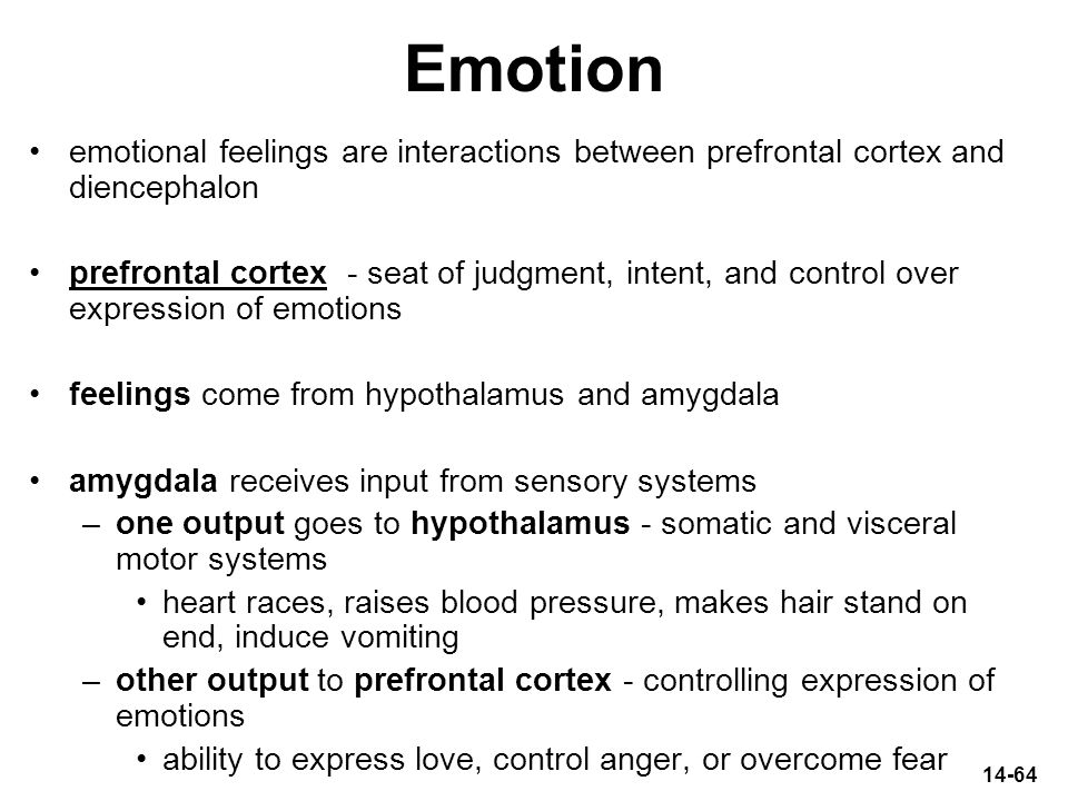 14-64 Emotion emotional feelings are interactions between prefrontal cortex and diencephalon prefrontal cortex - seat of judgment, intent, and control