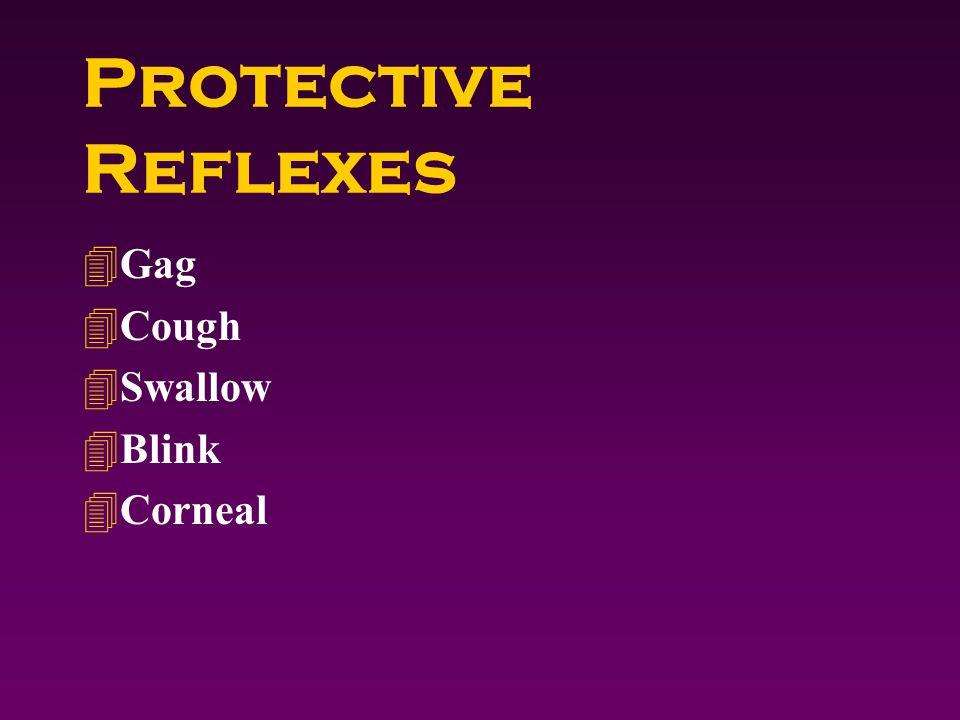 Protective Reflexes 4Gag 4Cough 4Swallow 4Blink 4Corneal