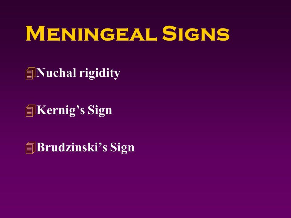 Meningeal Signs 4Nuchal rigidity 4Kernig's Sign 4Brudzinski's Sign