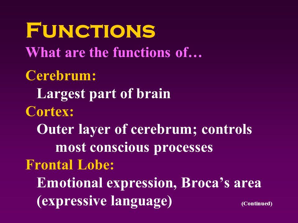 Symptoms What symptoms would signal a problem with the neurologic/sensory system.